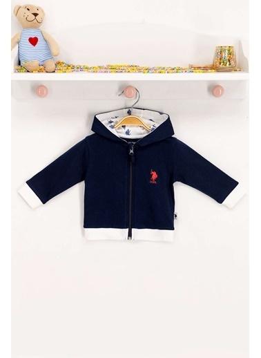 U.S. Polo Assn. Lisanslı Lacivert Bebek Sweatshirt Lacivert